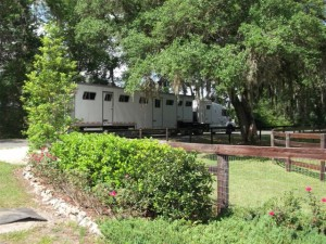 The Horses heading north from Ocala with Perry Horse Transport